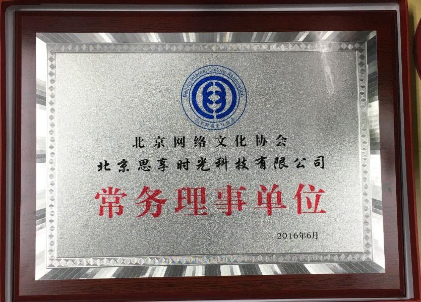Executive Member of Beijing Cultural Network Association